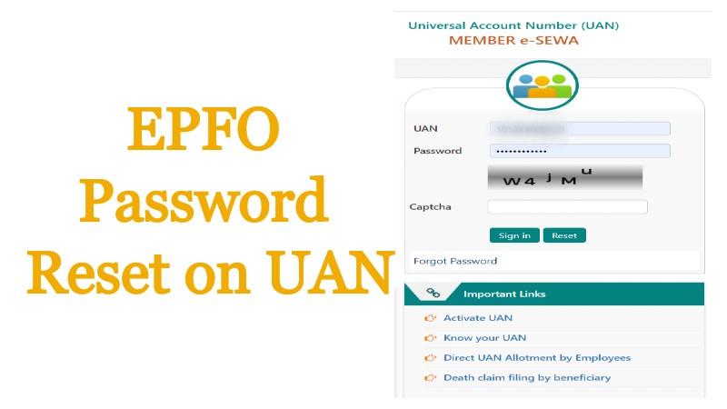 Reset EPFO Password